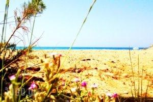 Chrissas Apartments_best prices_in_Apartment_Crete_Rethymnon_Rethymnon City