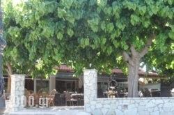 Panorama in  Diakopto, Achaia, Peloponesse