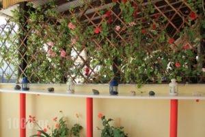 Dias Apartment_travel_packages_in_Macedonia_Pieria_Makrigialos