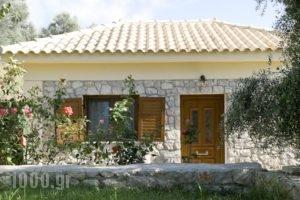 Panorama Gialovas_holidays_in_Hotel_Thessaly_Magnesia_Pilio Area
