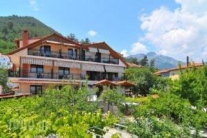 Studios Stefania_accommodation_in_Hotel_Aegean Islands_Thasos_Chrysi Ammoudia