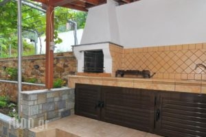 Studios Stefania_best prices_in_Hotel_Aegean Islands_Thasos_Chrysi Ammoudia