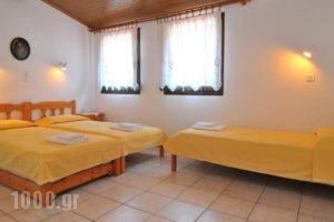 Studios Stefania_lowest prices_in_Hotel_Aegean Islands_Thasos_Chrysi Ammoudia