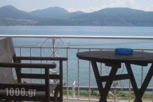 Studios Irini_travel_packages_in_Ionian Islands_Lefkada_Lefkada's t Areas