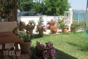 Studios Irini_best deals_Hotel_Ionian Islands_Lefkada_Lefkada's t Areas
