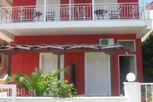 Studios Irini_accommodation_in_Hotel_Ionian Islands_Lefkada_Lefkada's t Areas