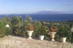 Aristea Studios in Kefalonia Rest Areas, Kefalonia, Ionian Islands