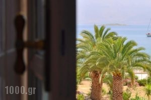 Villa Oianthia_lowest prices_in_Villa_Central Greece_Fokida_Galaxidi