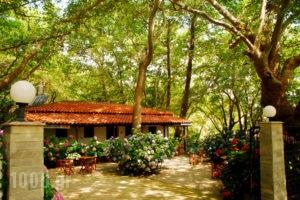 Tasoula Parselia_best prices_in_Hotel_Aegean Islands_Samothraki_Therma