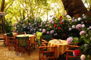 Tasoula Parselia_accommodation_in_Hotel_Aegean Islands_Samothraki_Therma