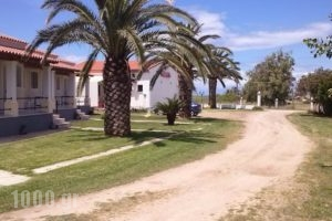 Liberty's Studios_lowest prices_in_Hotel_Ionian Islands_Corfu_Corfu Rest Areas