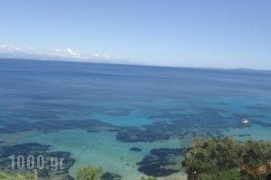 Meltemi Apartments_holidays_in_Apartment_Ionian Islands_Corfu_Corfu Chora