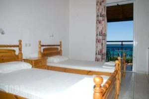 Vaso -Alykanas Studios_holidays_in_Room_Ionian Islands_Zakinthos_Alikanas
