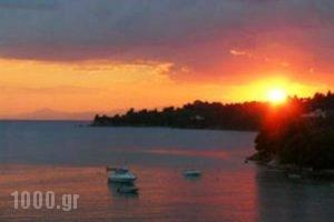 Kolios Beach Seaview Studios_best prices_in_Hotel_Sporades Islands_Skiathos_Skiathosst Areas
