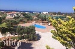 Elia Stavros Villas in Stavros, Chania, Crete