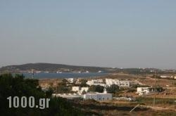 Lazino Studios And Apartments in Piso Livadi, Paros, Cyclades Islands