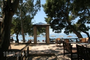 West_best prices_in_Hotel_Central Greece_Evia_Limni