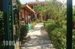 Elena Apartments in Corfu Rest Areas, Corfu, Ionian Islands