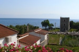 Bio House_accommodation_in_Hotel_Thessaly_Magnesia_Pilio Area