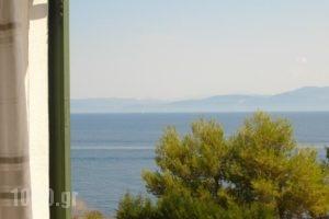 Villa Baronnos_holidays_in_Villa_Ionian Islands_Paxi_Paxi Rest Areas