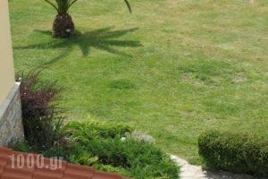 Maistrali Apartments_best prices_in_Apartment_Macedonia_Halkidiki_Chalkidiki Area