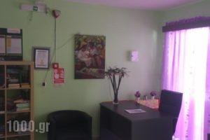 George's Studios_lowest prices_in_Hotel_Dodekanessos Islands_Kos_Kardamena