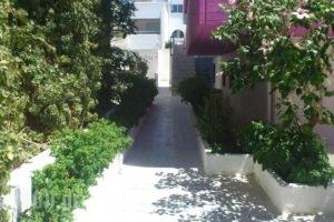 George's Studios_accommodation_in_Hotel_Dodekanessos Islands_Kos_Kardamena