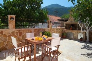 Venezia Apartments_lowest prices_in_Apartment_Ionian Islands_Kefalonia_Kefalonia'st Areas