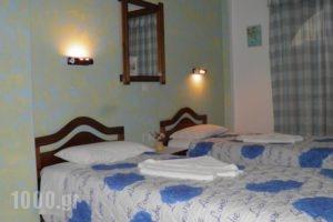 Toula Studio_lowest prices_in_Hotel_Aegean Islands_Ikaria_Ikaria Chora
