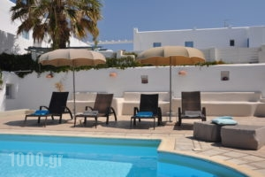 Heliessa Rooms and Suites_lowest prices_in_Hotel_Cyclades Islands_Paros_Naousa