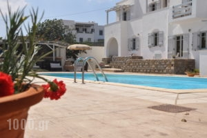 Heliessa Rooms and Suites_holidays_in_Hotel_Cyclades Islands_Paros_Naousa