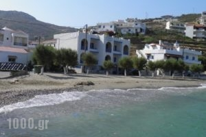 Toula Studio_holidays_in_Hotel_Aegean Islands_Ikaria_Ikaria Chora