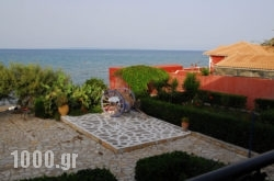 Alisaxni Studios in Argasi, Zakinthos, Ionian Islands