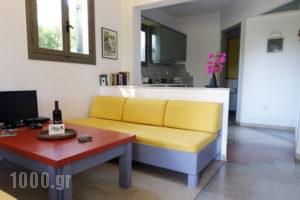Villa Pefki_lowest prices_in_Villa_Crete_Chania_Chania City