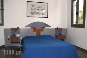 Villa Pefki_accommodation_in_Villa_Crete_Chania_Chania City