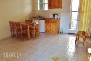 Lefkothea Apartments_lowest prices_in_Apartment_Ionian Islands_Lefkada_Vasiliki