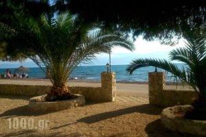 Finikas_accommodation_in_Apartment_Peloponesse_Argolida_Nafplio