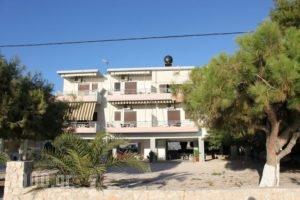 Finikas_best deals_Apartment_Peloponesse_Argolida_Nafplio