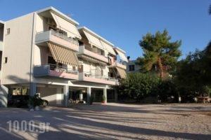 Finikas_holidays_in_Apartment_Peloponesse_Argolida_Nafplio