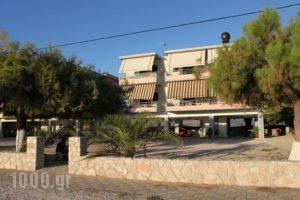Finikas_best prices_in_Apartment_Peloponesse_Argolida_Nafplio