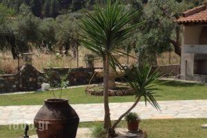 Studios Voula_holidays_in_Hotel_Macedonia_Halkidiki_Chalkidiki Area