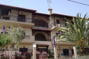 Studios Voula_accommodation_in_Hotel_Macedonia_Halkidiki_Chalkidiki Area