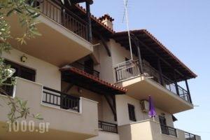 Studios Voula_best prices_in_Hotel_Macedonia_Halkidiki_Chalkidiki Area