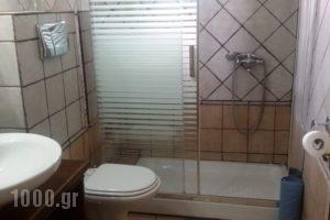 Brizi Guesthouse_holidays_in_Hotel_Thessaly_Trikala_Elati