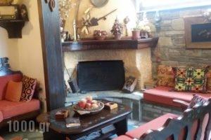 Brizi Guesthouse_accommodation_in_Hotel_Thessaly_Trikala_Elati