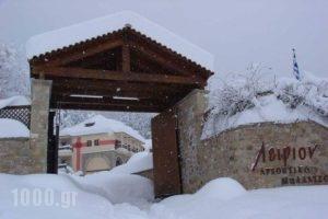 Leirion_accommodation_in_Hotel_Thessaly_Trikala_Paleochori