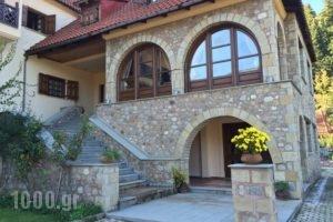 Leirion_best prices_in_Hotel_Thessaly_Trikala_Paleochori