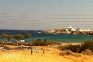 Papantonis Studios_lowest prices_in_Hotel_Cyclades Islands_Sifnos_Sifnos Chora
