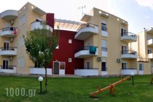 Adonis_accommodation_in_Apartment_Macedonia_Halkidiki_Kassandreia