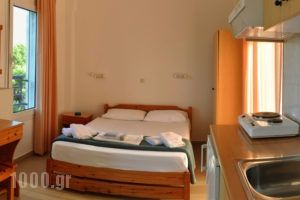 Adonis_lowest prices_in_Apartment_Macedonia_Halkidiki_Kassandreia
